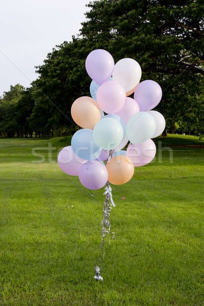 rainbow-colored air balloons on the grass in the park. Stock photo © art9858