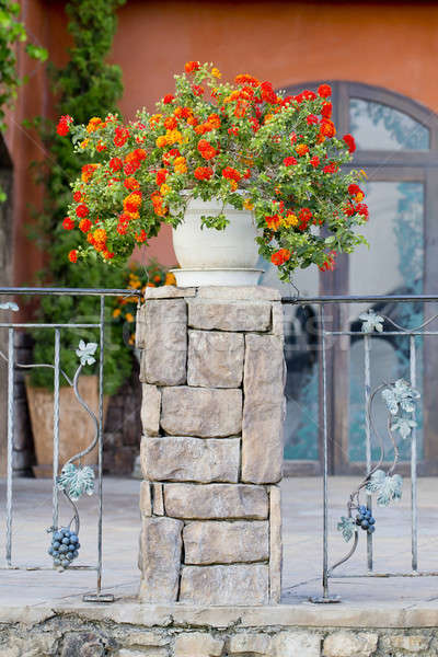 Flowerpots and house plants on the balcony Stock photo © art9858