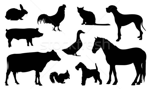 Animal Farm Silhouette Stock photo © artag