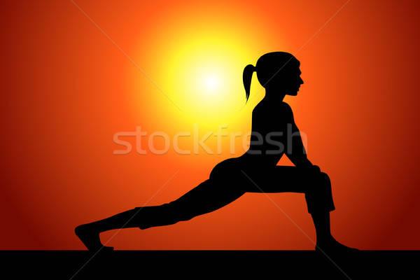 Siluet kadın vektör kız kadın Stok fotoğraf © artag