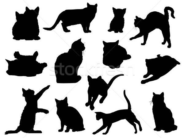 Kedi siluetleri ayarlamak vektör doğa sanat Stok fotoğraf © artag