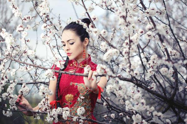 Geyşa kırmızı kimono sakura çekici Asya Stok fotoğraf © artfotodima