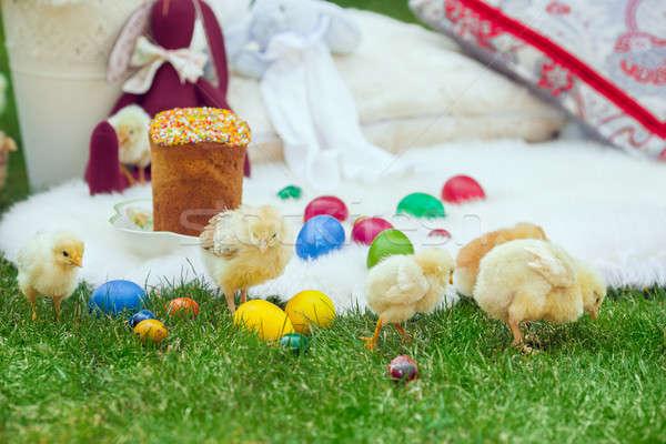 Baby chicken and ester eggs in the grass  Stock photo © artfotodima