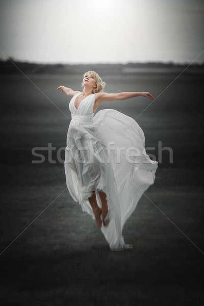 Fairy mooi meisje jurk vliegen magie Stockfoto © artfotodima