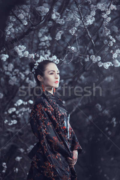 Geisha in red kimono in sakura Stock photo © artfotodima