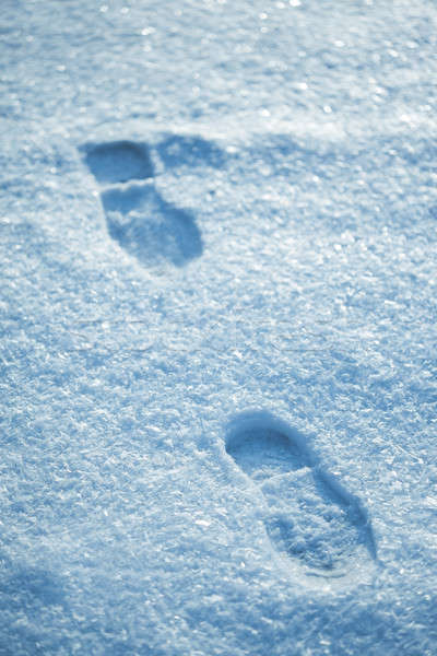 Hot footsteps on cold snow Stock photo © artfotodima