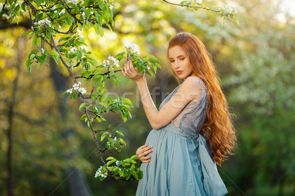 Young  pregnant woman relaxing and enjoying life in nature Stock photo © artfotodima