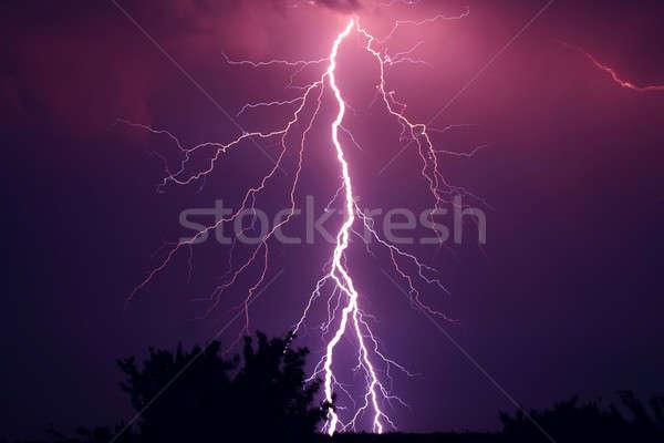 lightning  Stock photo © artfotodima