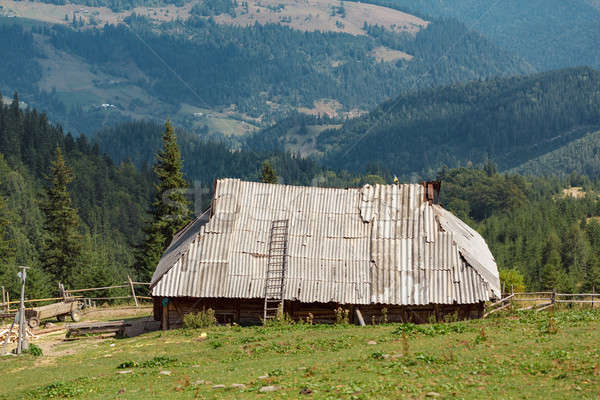Old single house in mountains Stock photo © artfotodima