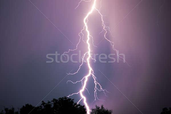 Night lightning over forest Stock photo © artfotodima