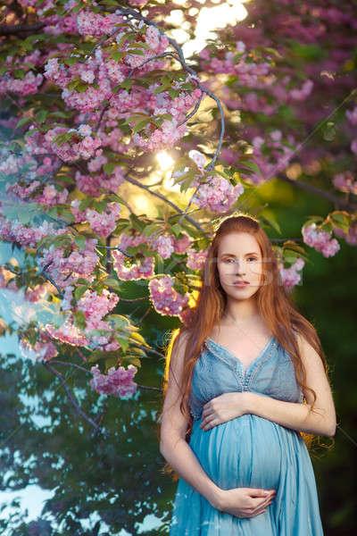 Gyönyörű terhes nő virágzó kert áll fák Stock fotó © artfotodima