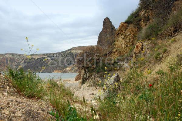 Tengeri tájkép tenger kövek part virágok Stock fotó © artfotoss