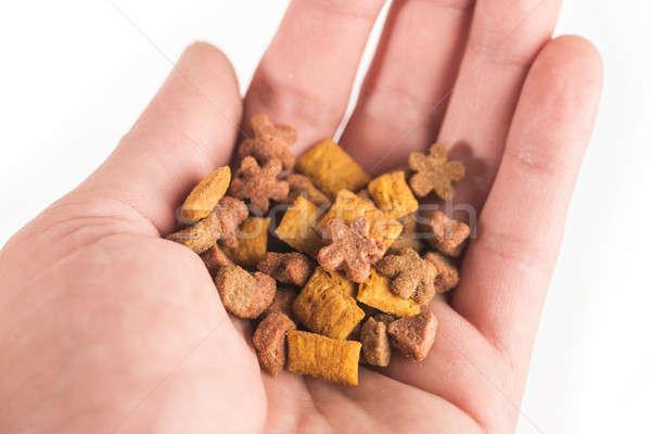 Stock fotó: Száraz · étel · díszállatok · pálma · kéz · fehér