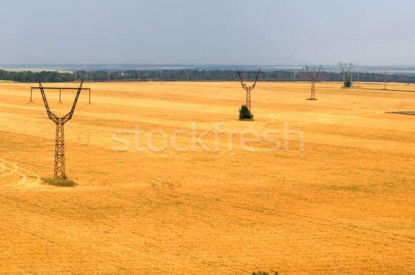 transmission line Stock photo © artfotoss