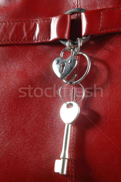 Köteg fém kulcsok piros bőr Stock fotó © artfotoss