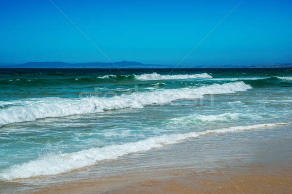Atlantic Beach, Portugal. Stock photo © artfotoss