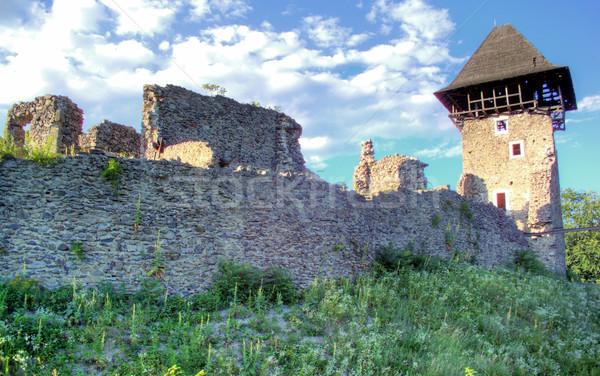 замок деревне Украина руин 12 км Сток-фото © artfotoss