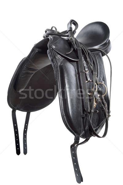 Zadel paard leder geïsoleerd witte sport Stockfoto © artfotoss