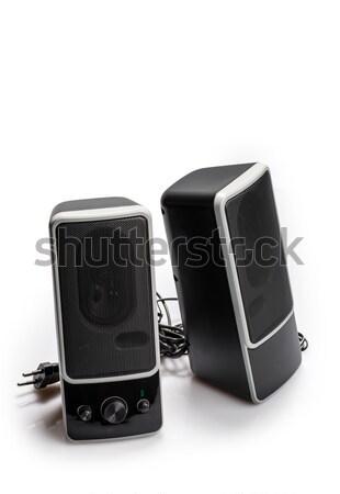 Fekete kettő hangszóró izolált fehér audio Stock fotó © artfotoss