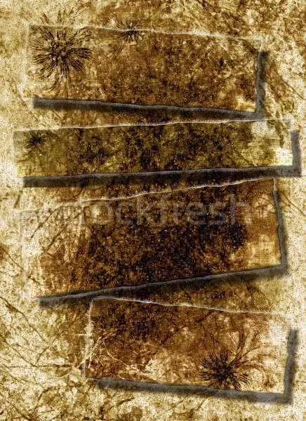 torn rough antique parchment paper texture background Stock photo © Artida