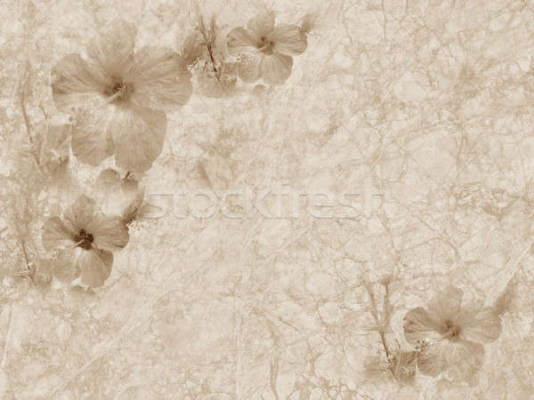 vintage grunge textured paper with floral ornament Stock photo © Artida