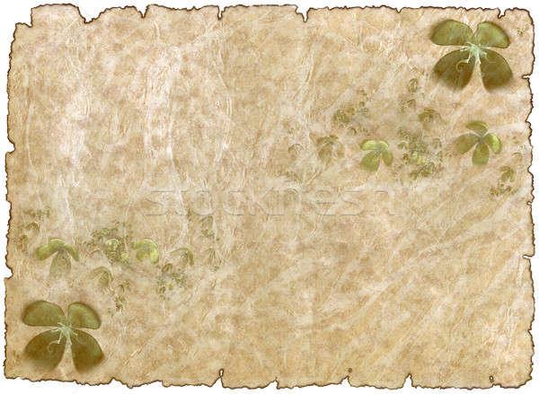 старые грубо антикварная пергаменте бумаги Shamrock Сток-фото © Artida