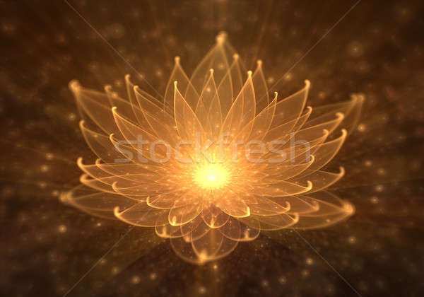 Water Lily, Radiant Orange Lotus with Rays of Light Stock photo © Artida