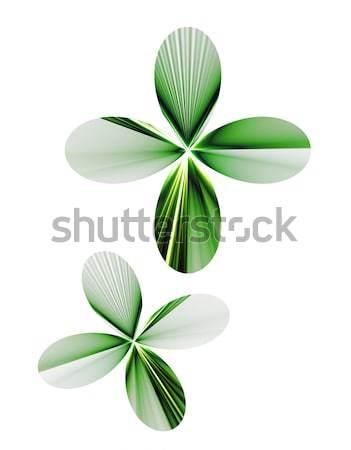two shamrocks on white background Stock photo © Artida