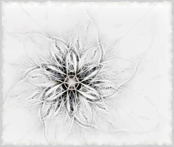Fofo flor abstrato textura fundo papel de parede Foto stock © Artida