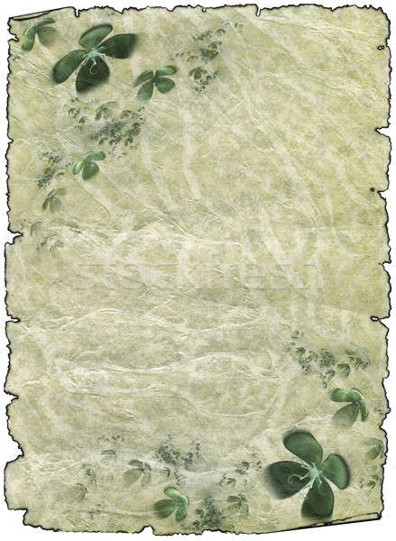 old rough antique parchment paper scrolls with shamrock Stock photo © Artida