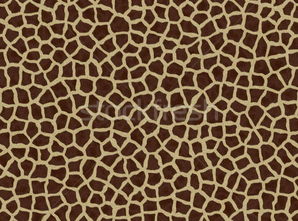 giraffe spots, giraffe fur Stock photo © Artida