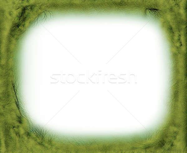 Varázslatos fa ág keret dekoratív zöld Stock fotó © Artida