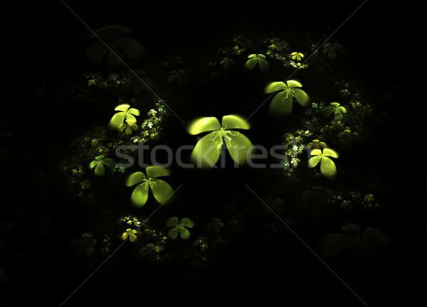 Shamrock, four leafed clover on black  Stock photo © Artida