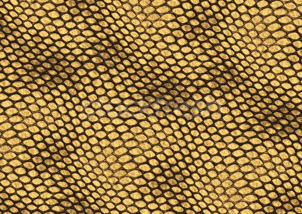 Gad skóry tekstury realistyczny ilustracja dekoracyjny Zdjęcia stock © Artida
