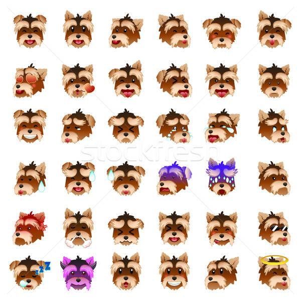 ヨークシャー 犬 顔文字 図面 漫画 現代 ストックフォト © artisticco