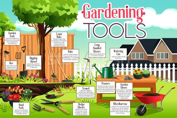 Kerti eszközök infografika szerszámok farm gazda kertészkedés Stock fotó © artisticco