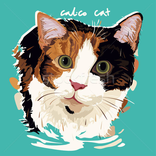 Stockfoto: Kat · schilderij · poster · portret · dier · tekening