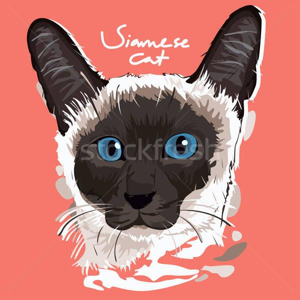 Stockfoto: Siamese · kat · schilderij · poster · portret · dier · cartoon