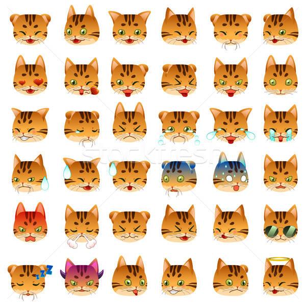Bengal kedi ifade çizim karikatür vektör Stok fotoğraf © artisticco