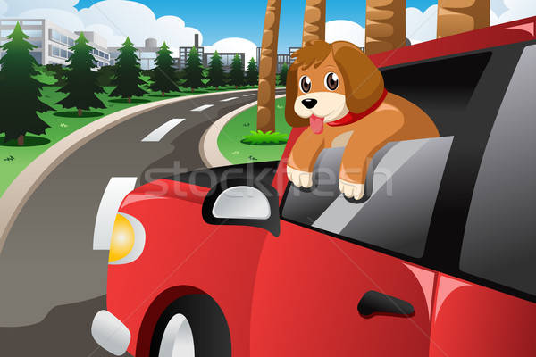 Dog Sticking His Face Out of the Car Window Stock photo © artisticco