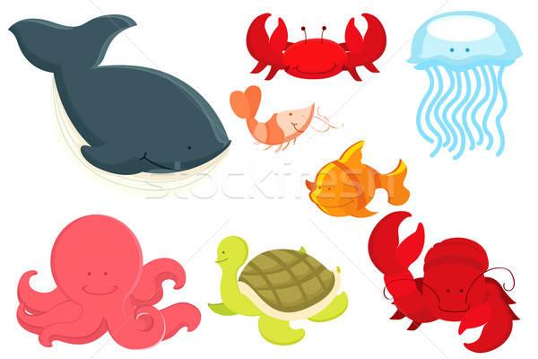 морской животные Cartoon морем рисунок черепахи Сток-фото © artisticco