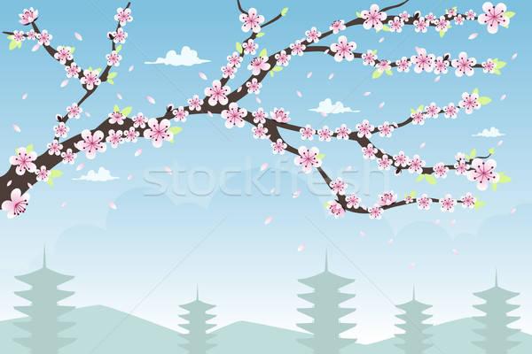 Cherry Blossom дизайна копия пространства весны пейзаж обои Сток-фото © artisticco