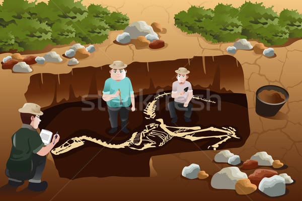Men discovering a dinosaurs fossil Stock photo © artisticco