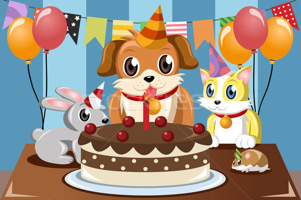 Pets birthday Stock photo © artisticco