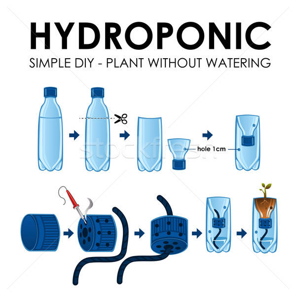 Diagram of a hydroponics setup Stock photo © artisticco