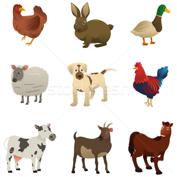 Haszonállat ikonok nyúl tyúk birka állat Stock fotó © artisticco