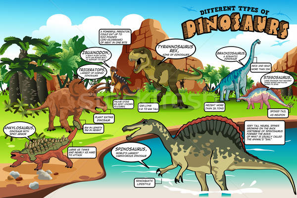 Different Types of Dinosaurs Infographic Stock photo © artisticco