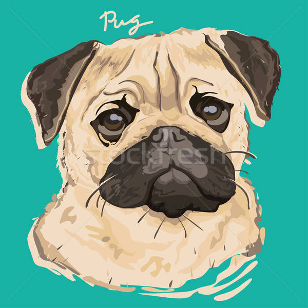 Stock photo: Pug Painting Poster