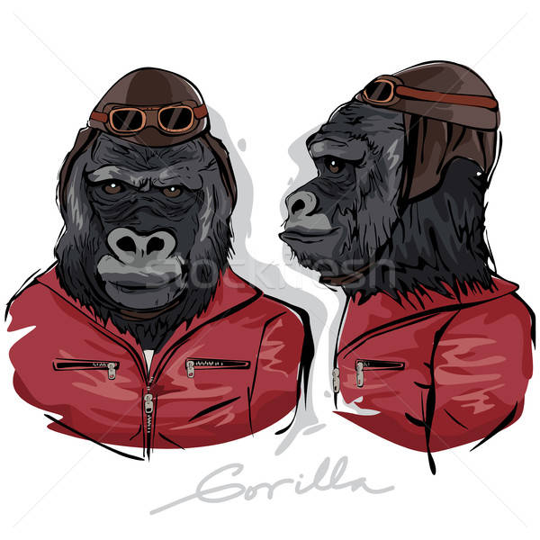Gorilla Dressed as Human Pilot Stock photo © artisticco