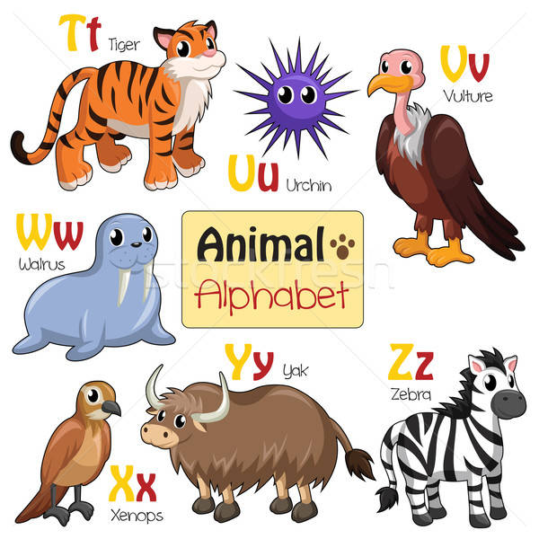 Alphabet animals from T to Z Stock photo © artisticco